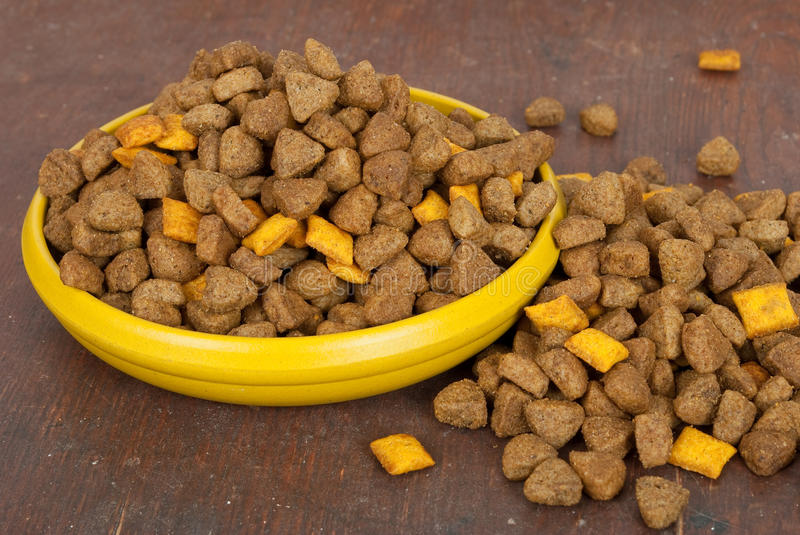 Dog food in bowl royalty free stock image