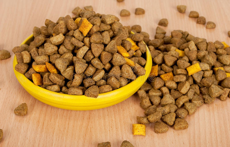 Download Dog food in bowl stock image. Image of background, bowl - 27061321