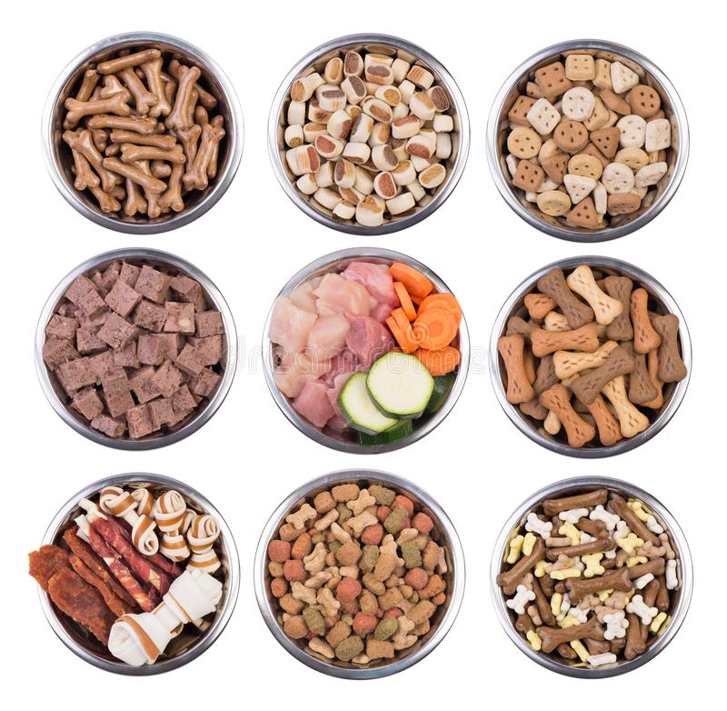 Dog food in bowls isolated on white background stock image