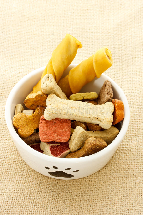 Dog Food In Dog Bowl Stock Photography