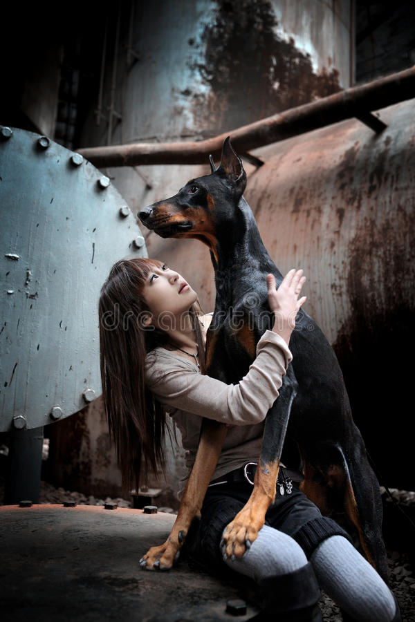 Download Dog and girl stock photo. Image of canine, dogs, girl - 23260512