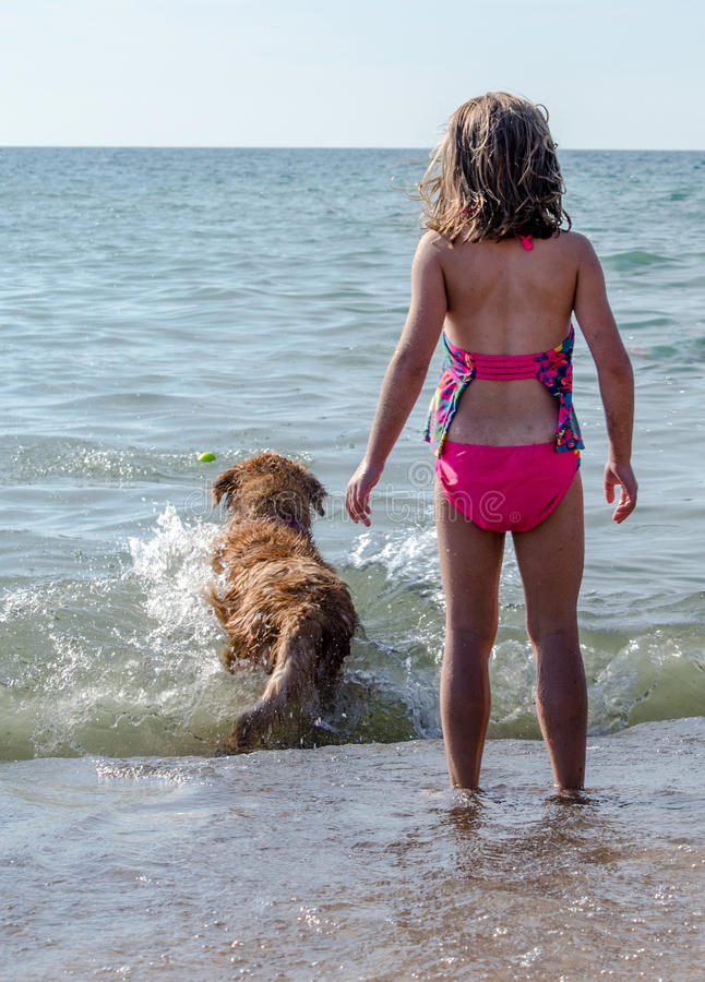 Dog and girl playing fetch stock photos