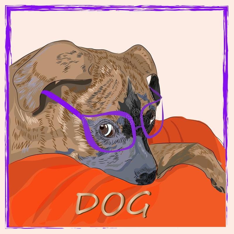 Dog in glasses illustration in vector in graphic style vector illustration