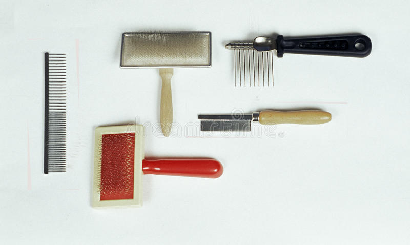 Dog groomer tools royalty free stock images
