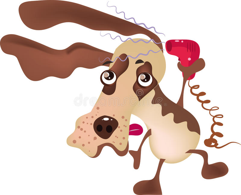 Dog grooming vector illustration