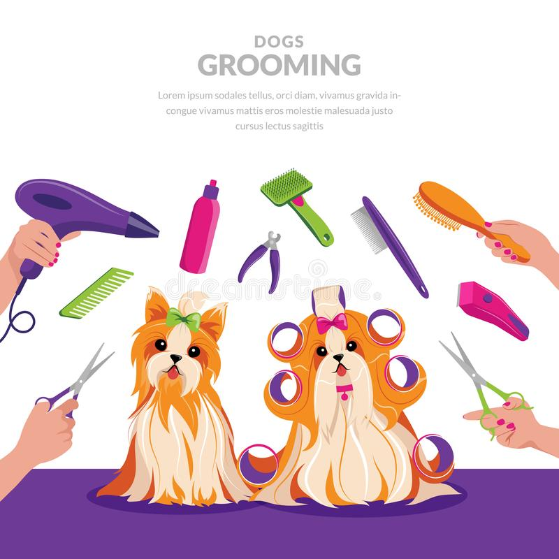 Dog grooming vector cartoon illustration. Pets care concept. Cute shih tzu and yorkshire terrier dogs in groomer salon.  vector illustration