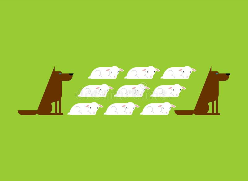 Dog guards flock of sheep. Dogs and lambs.  stock illustration