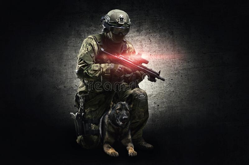 Dog-Handler, der mit einem ausgebildeten Hirten im Studio posiert Grenzschutz, Flughäfen, Abfertigung stockfoto
