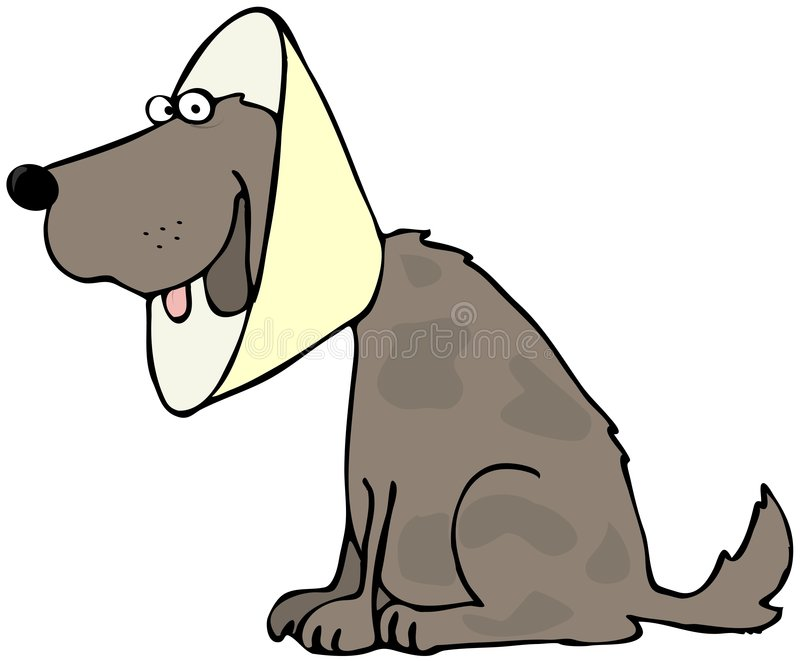 Download Dog With Head Gear stock illustration. Image of tongue - 8851823