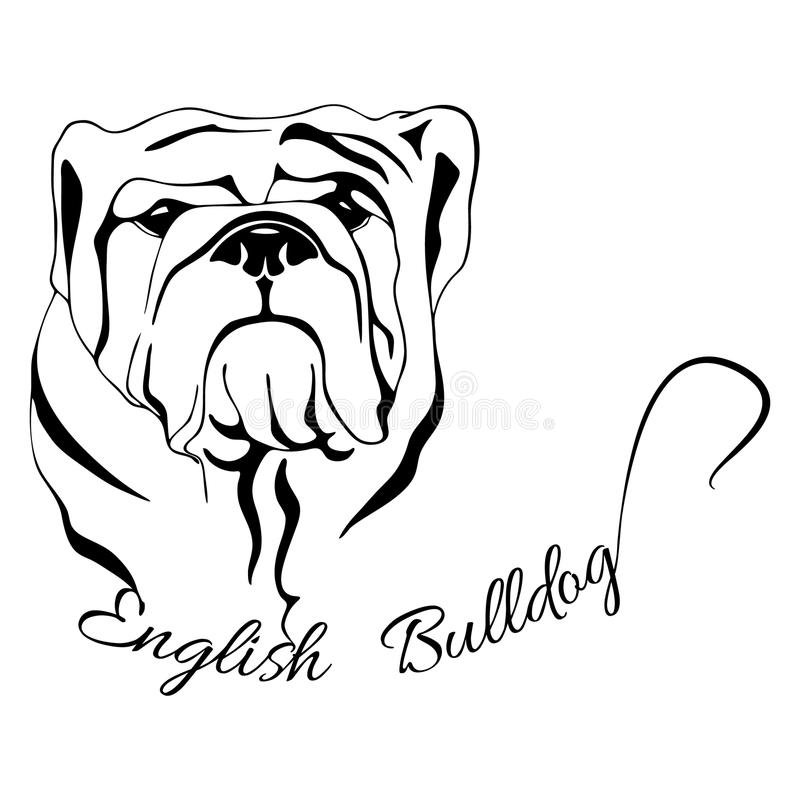 download dog head isolated english bulldog stock vector image 78995676