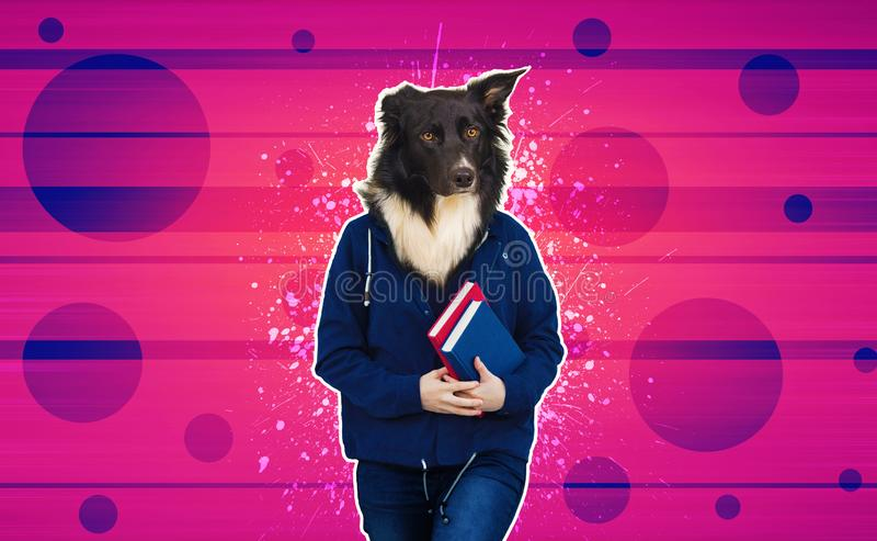 Dog headed student royalty free stock photography