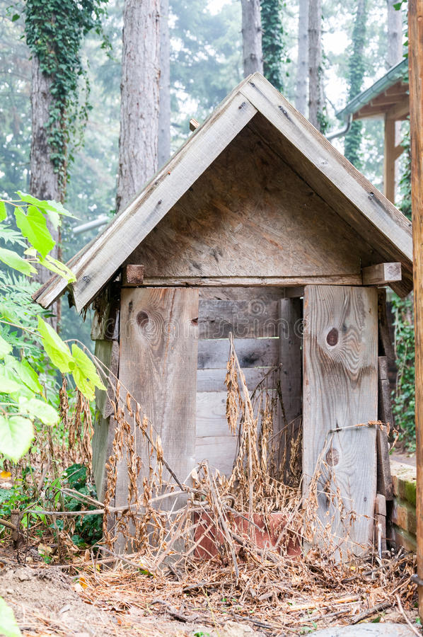 Dog house. Abandoned dog house in the forest. Selective focus. Natural light stock photo