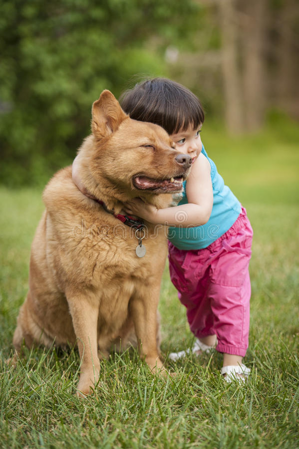Dog hugged by toddler stock photo