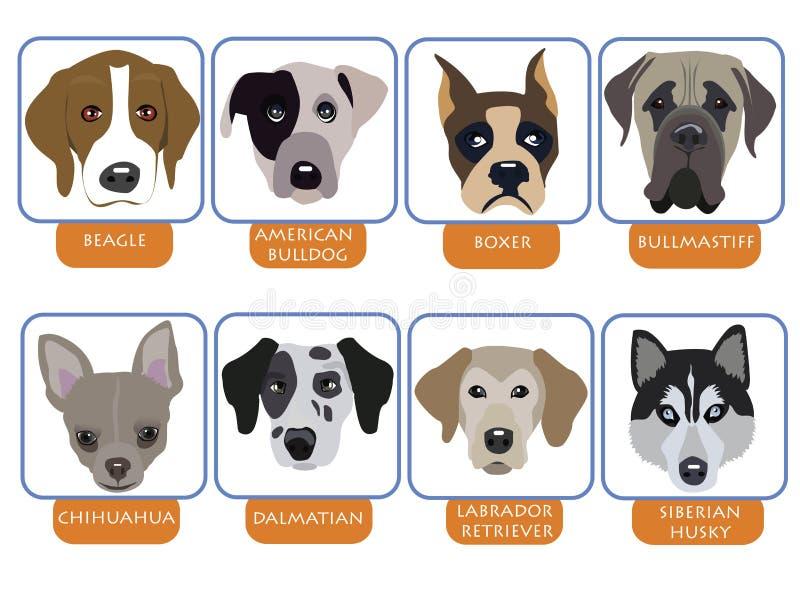 Download DOG ICONS stock vector. Image of chihuahua, dalmatian - 2295447