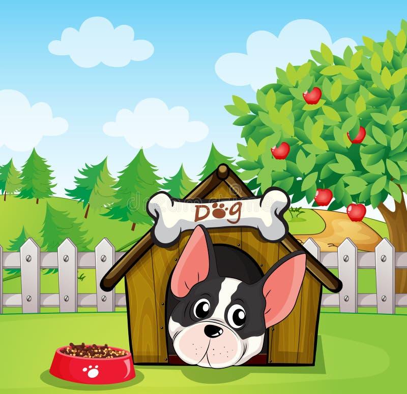 A Dog Inside A Dog House At A Backyard With An Apple Tree