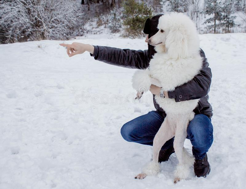 The dog and its owner looking into the distance in winter stock photos