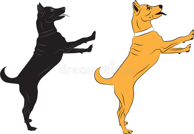 Dog jumping asking someone something. Black and color Vector illustrations on white background stock illustration
