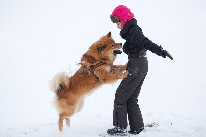Dog jumps up to young girl stock images