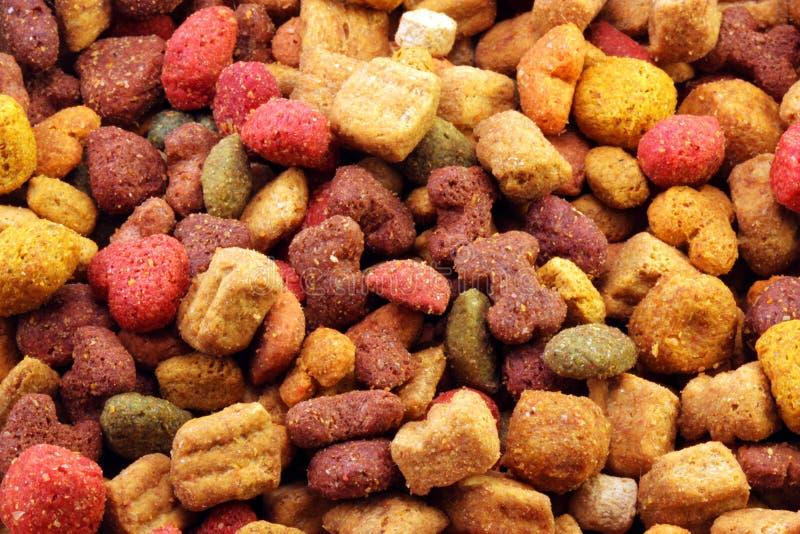 Download Dog kibble stock image. Image of canine, kibble, nourish - 8576555