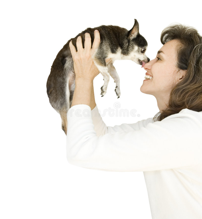 Dog kisses stock photography