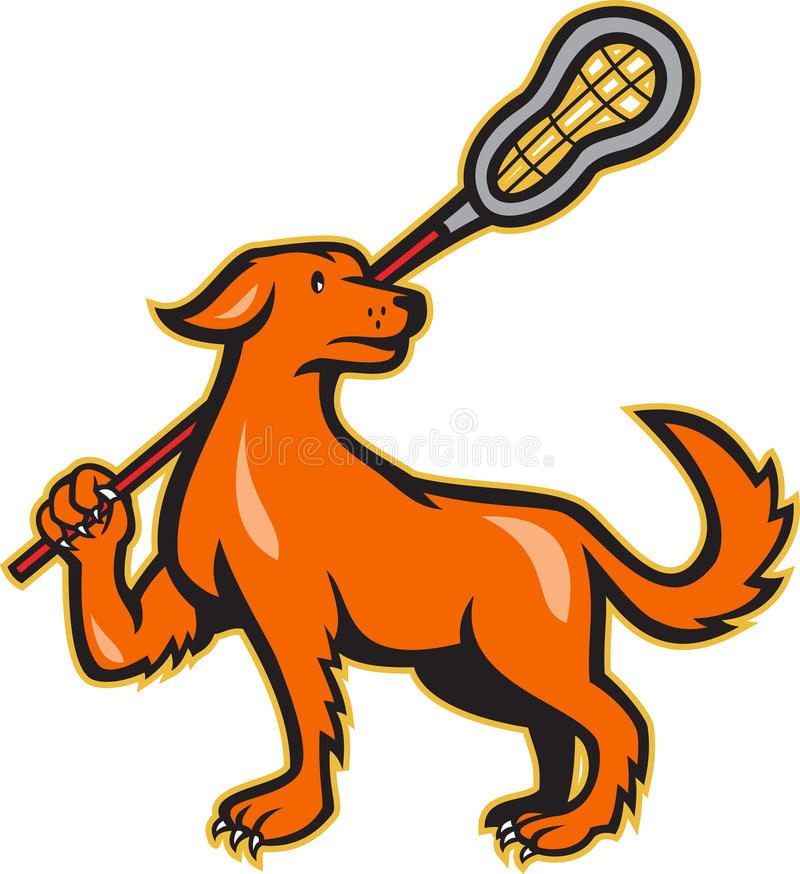 Dog With Lacrosse Stick Side View royalty free illustration