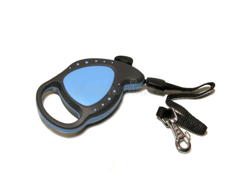 Dog leash royalty free stock image
