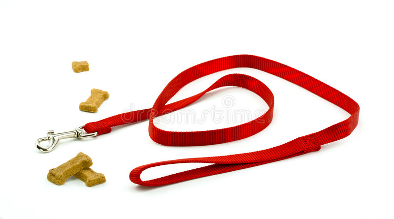 Download Dog Leash and Biscuits stock image. Image of loop, clasp - 9069925