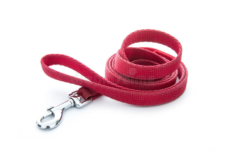 Dog leash stock photos