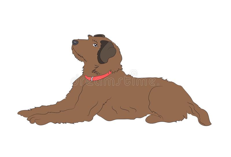 Dog lies, color drawing, vector stock illustration