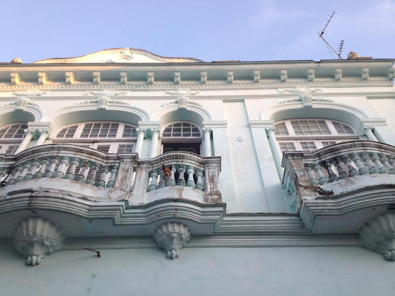 A dog looking through the balcony of a beautiful Colonial building in Santa Clara, Cuba. stock photography