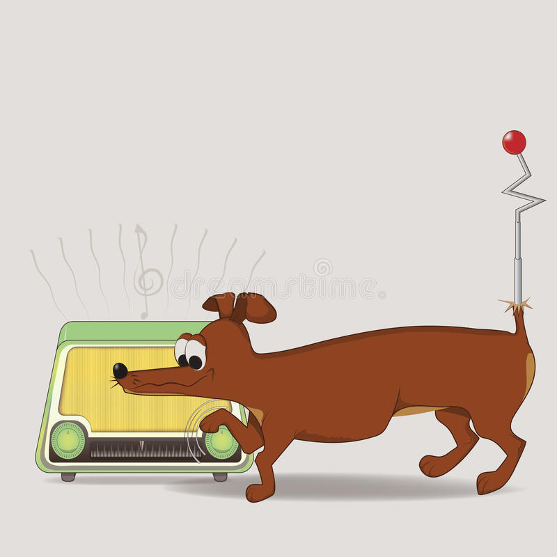 Dog lover royalty free stock image