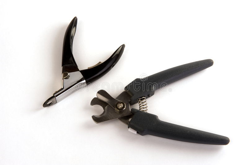 Dog nail clippers royalty free stock photography
