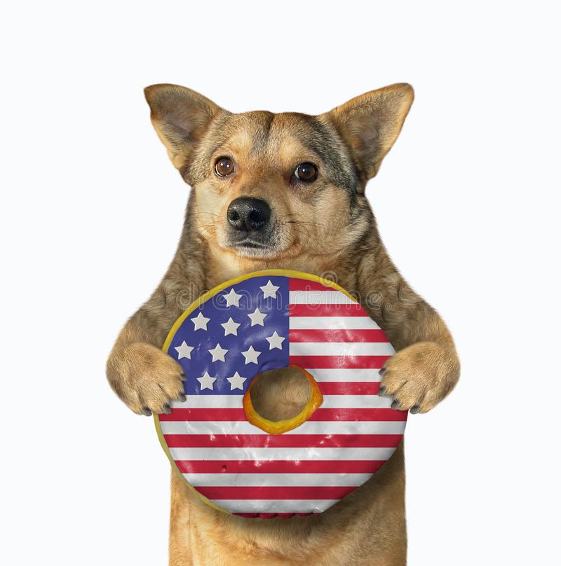 Dog with an american donut royalty free stock photography