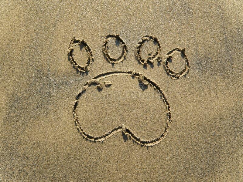 Dog paw print. The paw print on sand royalty free stock photos