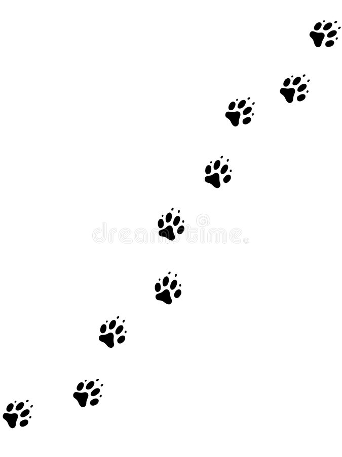 Dog pawprints 2 royalty free illustration