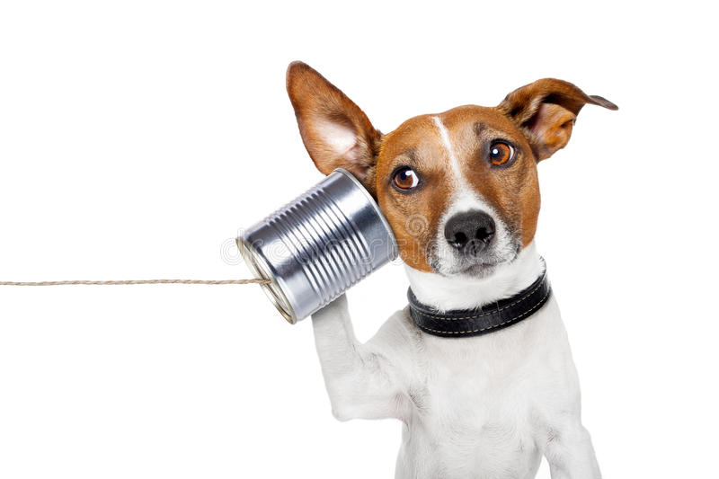 Dog on the phone. With a can