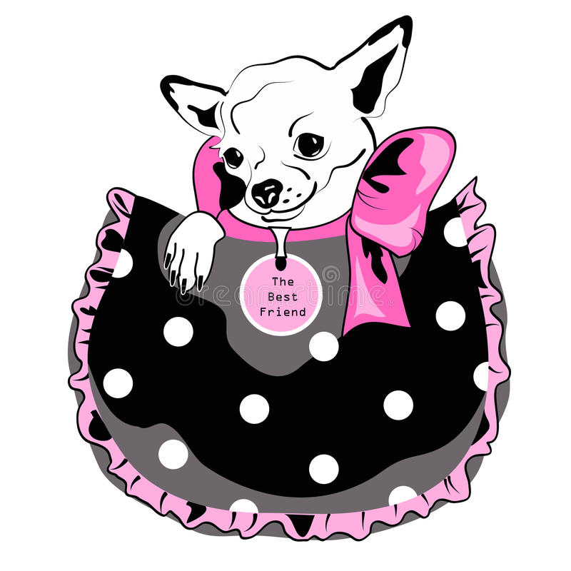 Dog in pocket. Black, pink and white drawing royalty free illustration
