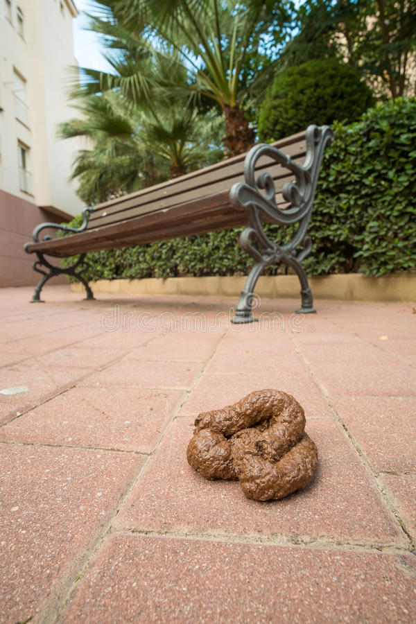 Dog poo. Large heap of dog poo beside a park bench royalty free stock photography