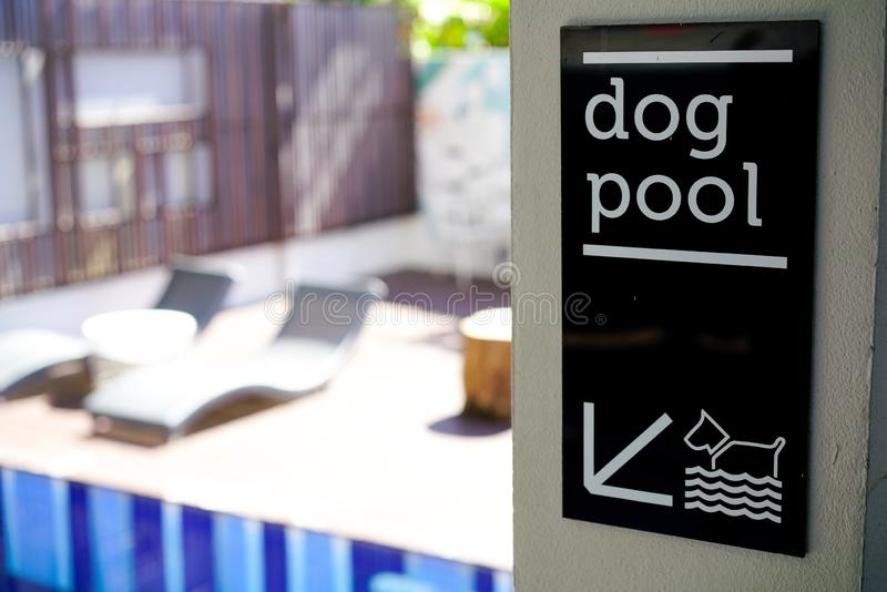 Dog pool sign royalty free stock photos