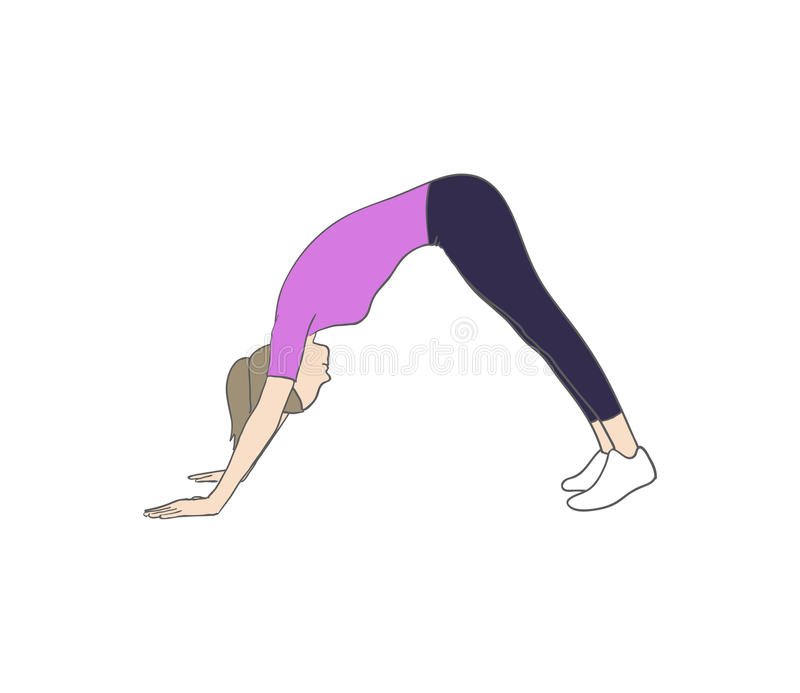 Dog pose. Digital illustration of a fitness woman doing dog pose royalty free illustration