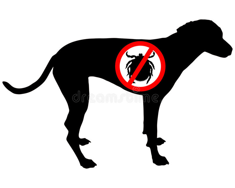 Dog prohibition sign for ticks. Detailed and colorful illustration of dog prohibition sign for ticks stock illustration