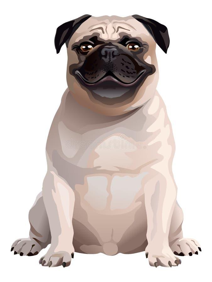 Smile Dog. Pug royalty free stock photos