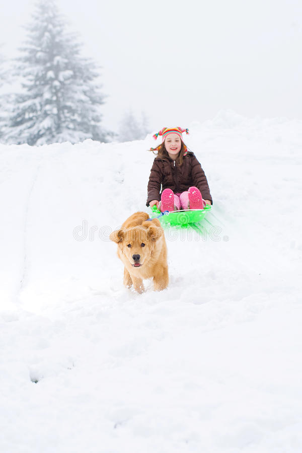 Download Dog Pulling Child On A Sled Stock Image - Image of snow, park: 22871375