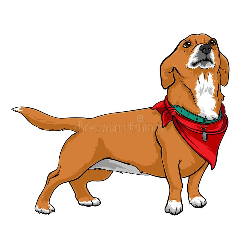 Dog with a red handkerchief on the neck. Dog with a collar. A devoted dog looks up at the host. Stock Vector illustrations. Dog with a red handkerchief on the stock illustration