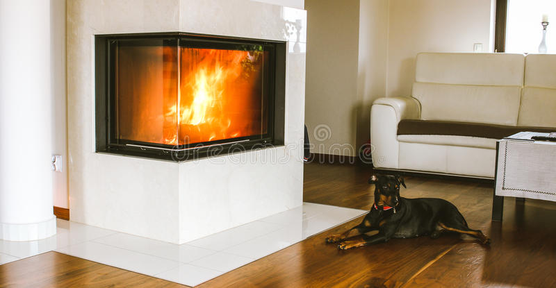Dog resting by the fireplace stock photos
