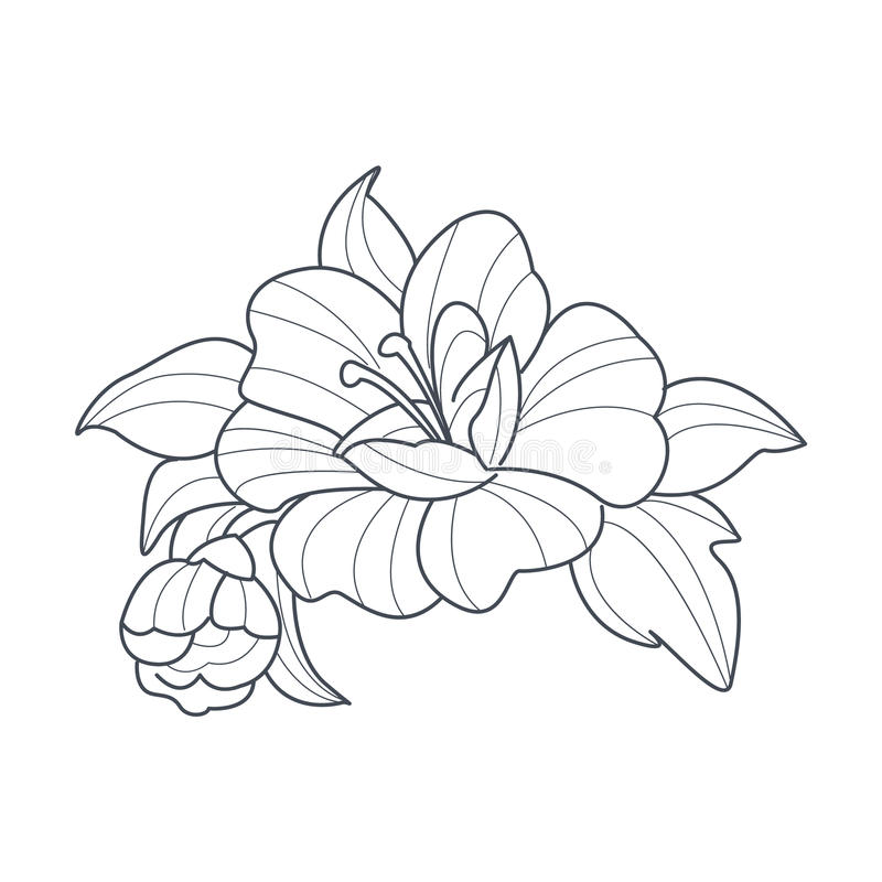 Download Dog Rose Flower Monochrome Drawing For Coloring Book Stock Vector