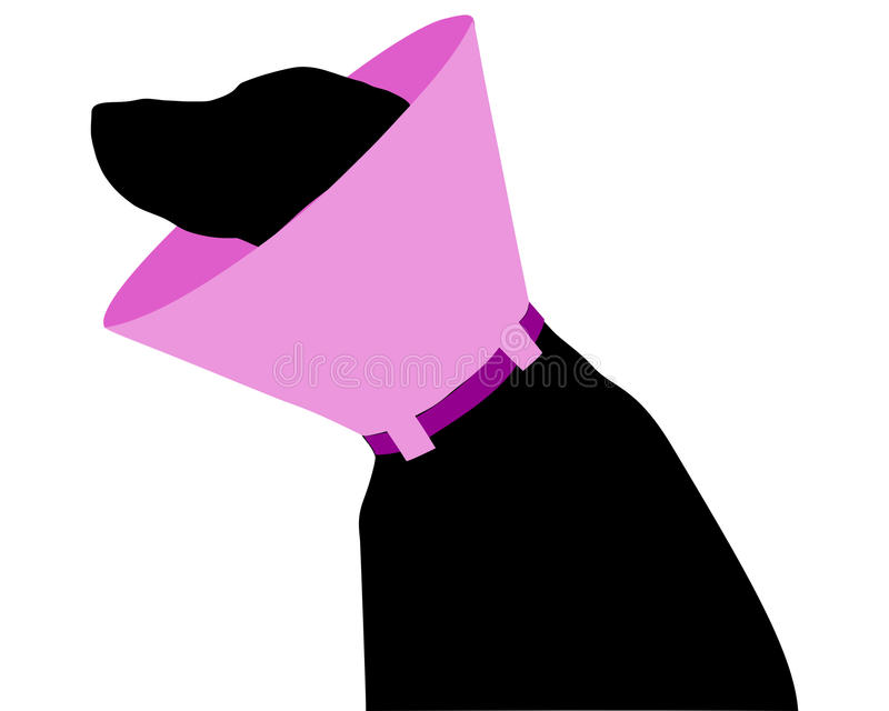 Download Dog with ruff stock vector. Image of toby, background - 18368769