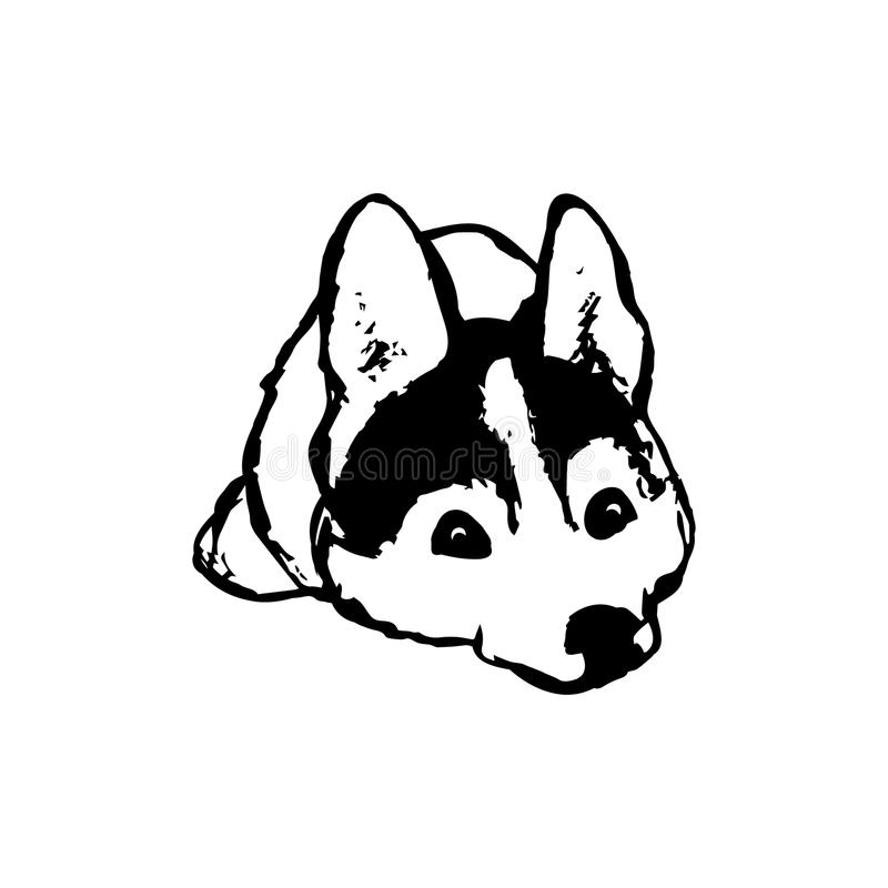 The dog`s head on white background vector illustration