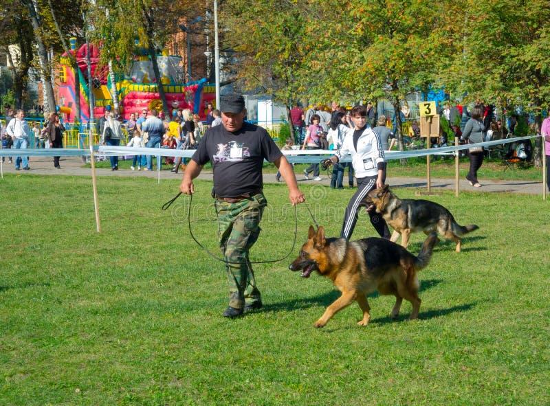 Dog Show Editorial Image