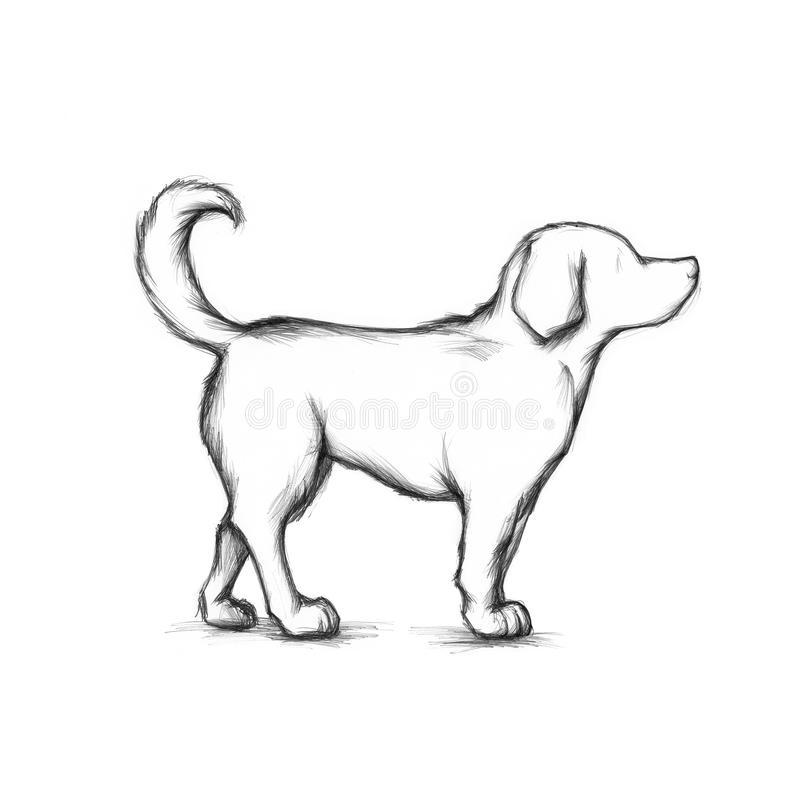 Dog. Simple Illustration of a tall dog vector illustration